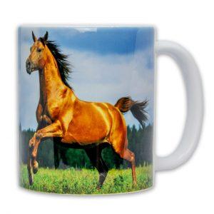 Hrnek s fotkou - Cválající Kůň