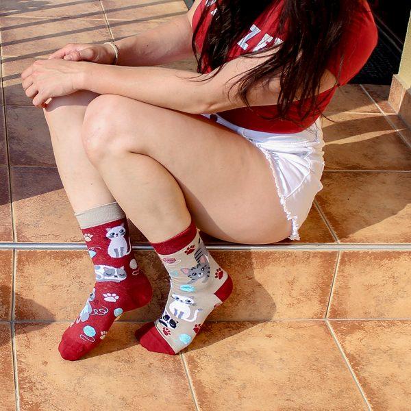 Veselé ponožky - Koťátka