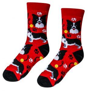 Veselé ponožky Pes Border kolie