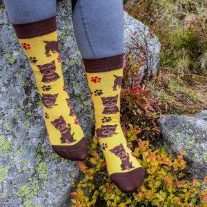 Veselé ponožky -Pes Yorkshire terier